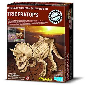 4M Dig a Triceratops - English Edition