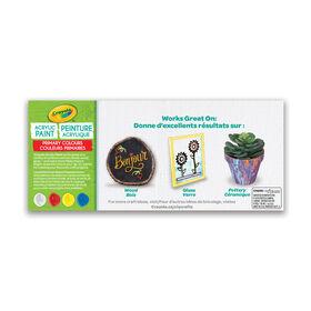 Crayola Multi-Surface Acrylic Paint, Primary Colours