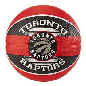 Raptors Team Basketball