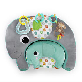 Bright Starts™ Two Can Play™ Multi-Use Pillow Set
