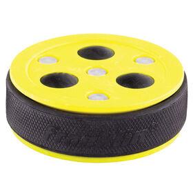 NHL Roll-A-Puck