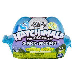 Hatchimals CollEGGtibles - Boîte de deux œufs de Saison 2 - La Baie des agrumes par Spin Master