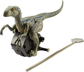 "Jurassic World Rip Run Dinos Velociraptor ""Blue"