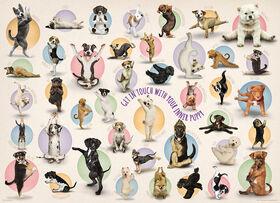 Eurographics Yoga Puppies Oversize 300 pc Puzzle